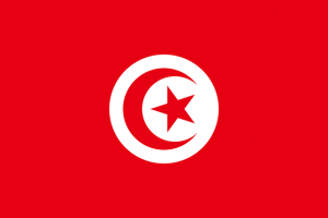 a9db2241bd09b9e5da8a6d8121c4905d tunisienflagga 300x200 - a9db2241bd09b9e5da8a6d8121c4905d_tunisienflagga